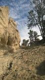 Mala sombra de la montaña de banff del valle del arco Imagen de archivo