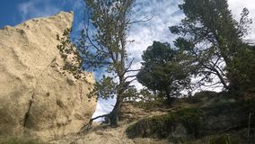Mala sombra de la montaña de banff del valle del arco Fotografía de archivo