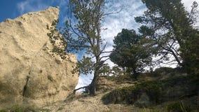 Mala sombra de la montaña de banff del valle del arco Foto de archivo libre de regalías
