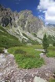 Mala studena dolina -谷在高Tatras,斯洛伐克 免版税库存图片