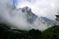 Mala studena dolina hiking trail in High Tatras, summer touristic season, wild nature, touristic trail. Fog Stock Images