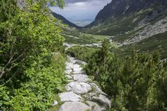Mala studena dolina hiking trail in High Tatras, summer touristic season, wild nature, touristic trail. Panoramic view to the valley, viewpoint, stone path Royalty Free Stock Images