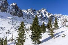 Mala Studena dolina w zimie Tatrza?skie g?ry Sistani obraz stock