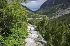 Mala studena dolina wycieczkuje ślad w Wysokim Tatras, lato turystyczny sezon, dzika natura, turystyczny ślad obrazy royalty free