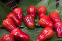 Malabaräpfel auf den grünen Blättern lizenzfreie stockfotografie