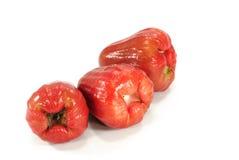Malabaräpfel oder chomphu Stockfotografie