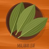 Malabar cassia leaf flat design vector icon. Royalty Free Stock Photos