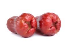 Malabarapfel auf weißem Hintergrund Lizenzfreie Stockfotos