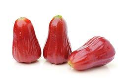 Malabarapfel lokalisiert auf weißem Hintergrund Stockfotografie
