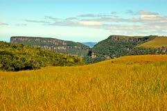 Malacara kanjon, sydliga Brasilien Royaltyfri Foto