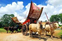 Malacca-Ochse-Wagen Stockfotos