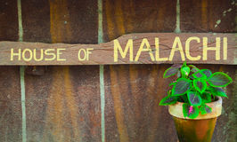 malachi photos libres de droits