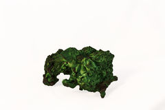 Malachite κρύσταλλα Στοκ Εικόνες
