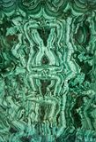 malachite Royaltyfri Bild