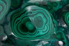 Malachite macro mineral stone on a white background royalty free stock images