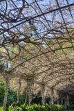 Malaga botaniska trädgårdar Royaltyfri Fotografi