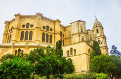 Malaga Cathedral in Andalusia Stock Photos