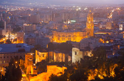Malaga Cathedral and cityspace from castle in night. View of Malaga Cathedral and cityspace from castle in night. Spain royalty free stock images