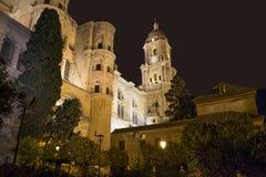 Malaga Cathedral at night Royalty Free Stock Photos
