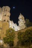 Malaga Cathedral at night Royalty Free Stock Photo
