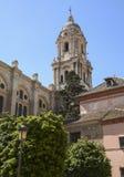 Malaga domkyrka Fotografering för Bildbyråer