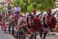 MALAGA, ESPAGNE - AOÛT, 14 : Cavaliers et chariots à Malaga Photographie stock libre de droits