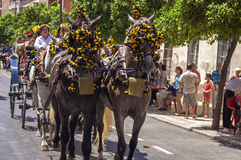 MALAGA, ESPANHA - AGOSTO, 14: Cavaleiro e transportes no Malaga Imagens de Stock Royalty Free