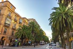 Malaga, Espanha/04 03 2019: Palmeiras grandes na rua de Alameda de dois pontos na cidade da arquitetura da cidade mediterrean da  fotografia de stock royalty free