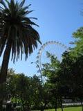 Malaga Ferris Wheel royalty free stock photo