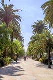 MALAGA HISZPANIA, CZERWIEC, -, 14: Park Malaga widok w słonecznym dniu dalej obrazy stock