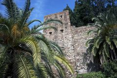 Malaga, Hiszpania, Luty 2019 Arabski forteca Gibralfaro Punkt zwrotny Malaga, Hiszpania Ogromni drzewka palmowe na tle stary zdjęcia stock