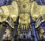 Malaga katedra salowa Obraz Royalty Free