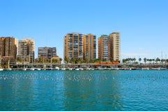 Malaga port med yachter, fartyg och fåglar på vatten Royaltyfri Fotografi