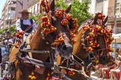 MALAGA, SPAGNA - AUGUSTA, 14: Cavallerizzi e carrelli a Malaga Fotografia Stock