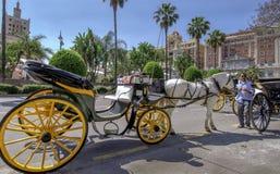 MALAGA, SPAGNA - IL 14 GIUGNO: Cavallerizzi e carrelli nello streptococco della città Immagini Stock Libere da Diritti