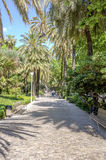 MALAGA, SPAIN - JUNE, 14: Park of Malaga view in a sunny day on Royalty Free Stock Photo
