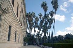 Malaga Spanien, Februari 2019 Museo Provinsiell de las Bellas Artes härliga spensliga palmträd royaltyfri fotografi