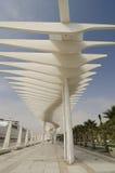 Malaga. Surprise palm street in Malaga, Spain Stock Photo