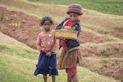 Malagasy κορίτσια σε ένα τοπίο τομέων Στοκ Εικόνα