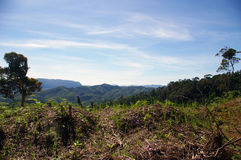 Malagasy Highlands. royalty free stock photo