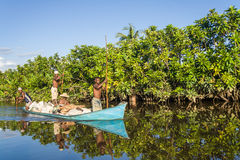 Malagasy people paddling Stock Photography