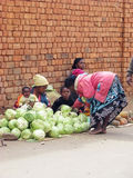 malagasy säljare Royaltyfria Bilder