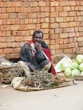 malagasy säljare Arkivbilder