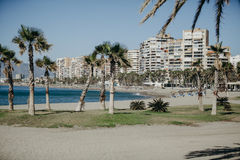 Malagueta beach in a sunny day, with deck chairs and umbrellas on the sand. The Malagueta beach is the main beach in Malaga city Stock Photos