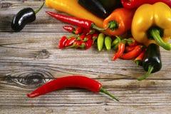 A malagueta picante mexicana salpica o serrano colorido do poblano do habanero da mistura Fotografia de Stock