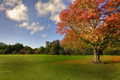 Malahide Castle Royalty Free Stock Photos
