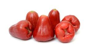 Malaie Apple oder Syzygium malaccense Stockfotos