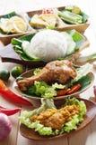 Malajiska stekt kycklingris royaltyfri fotografi