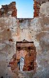 Malamute d'Alaska se tenant sur les ruines du vieux bâtiment Photos libres de droits