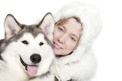 Malamute dog with a girl Stock Image